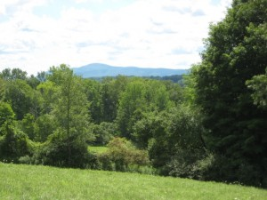 Mt Everett viewed from Hardy land on East Road